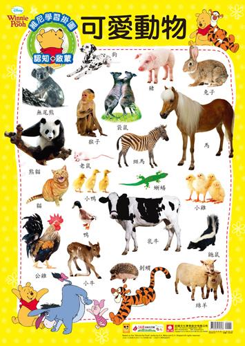 9205-8 维尼学习挂图-可爱动物