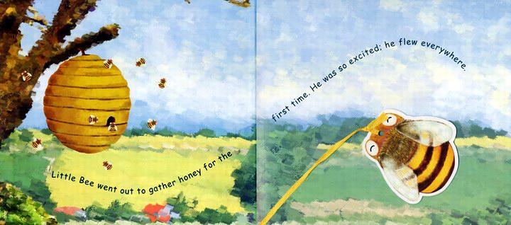 1片剧场故事cd  加赠6片英语儿歌 vcd ◆内容介绍:   昆虫的小小世界