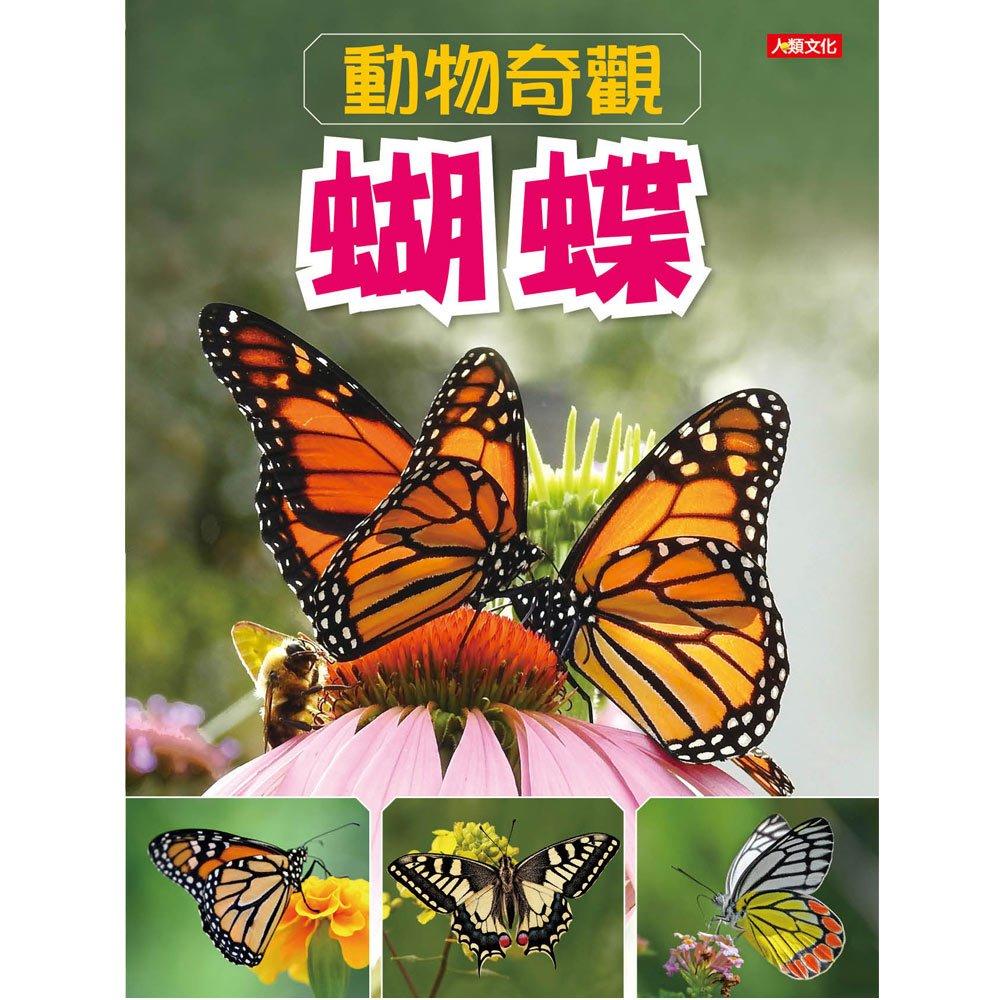 動物奇觀:蝴蝶